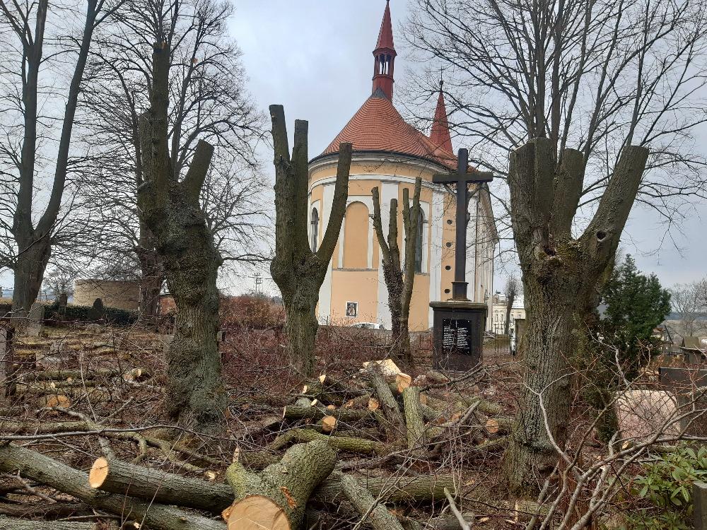 kácení starých dřevin na hřbitově v Království