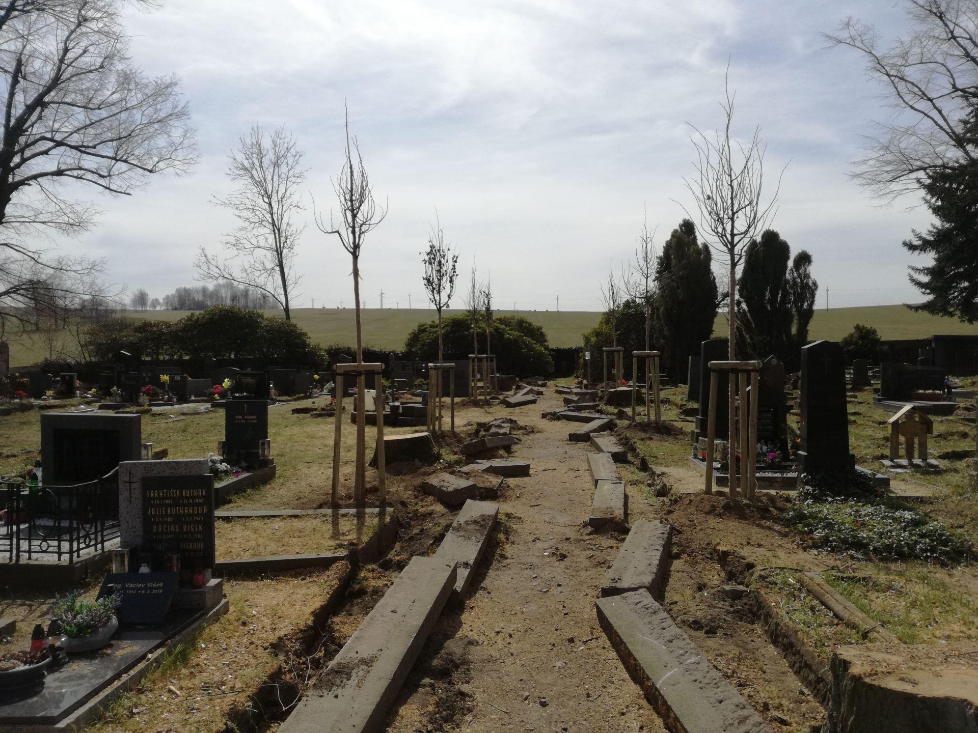 nově vysázené dřeviny a obrubníky připravené k osazení